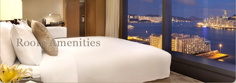 5. Room Amenities